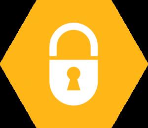 delphos-security